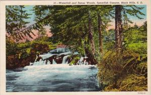 Waterfall And Dense Woods Spearfish Canyon Black Hills South Datoka 1953