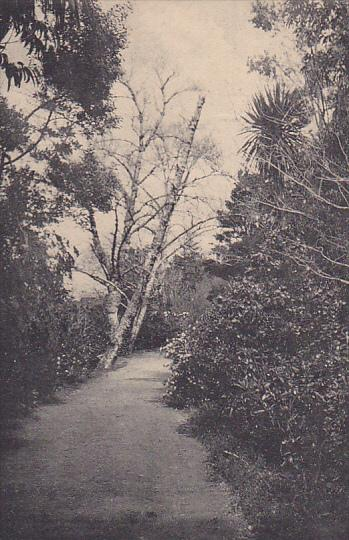 ST. MICHAELS ISLAND, Ponta Delgada, Portugal, 1900-1910's; Maquez Da Praia Pa...