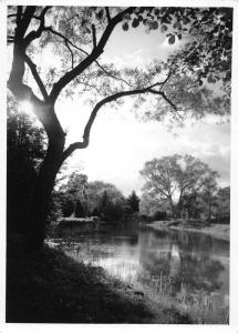 Zelazowa Wola Poland Park Pond Scenic View Real Photo Antique Postcard J77336