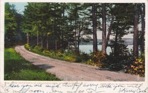 Vine Grove Drive At Canadarego Lake, Richfield Springs, New York, PU-1908