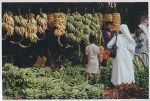 Banana Shop Kerala Indian Bananas Store Postcard