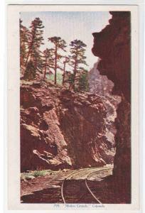 Railroad Track Mother Grundy Colorado 1910c postcard