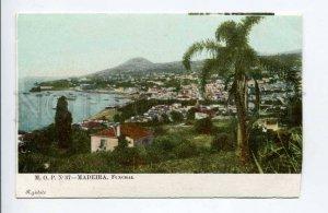 424419 PORTUGAL MADEIRA Funchall Vintage postcard