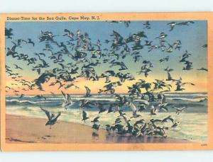 Linen SEAGULL BIRDS ON SHORELINE Cape May - Near Wildwood & Vineland NJ AD6783