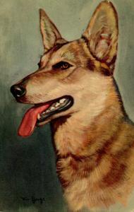Dog - German Shepherd Police Dog
