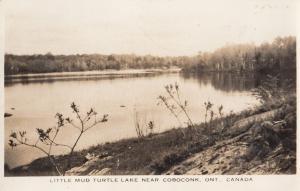 Turtle Lake Coboconk Ontario Canada Old Postcard