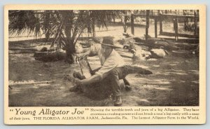 Jacksonville Florida~Alligator Farm~Man Opens Jaw of Young Alligator Joe~1920s