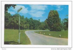 The Lake Area, Kuala Lumpur, Malaya, 1950s-60s