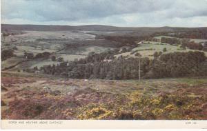 Post Card Devon Dartmoor DARTMEET Gorse and Heather