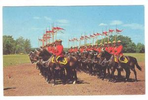 The Famed Royal Canadian Mounted Police Drilling For The Colorful Muscle Ride...
