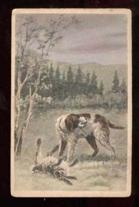 025361 English SETTER on Hunt. Hare. Vintage colorPC