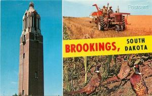 SD, Brookings, South Dakota, Multi View, Campanile State College, Farming, Birds