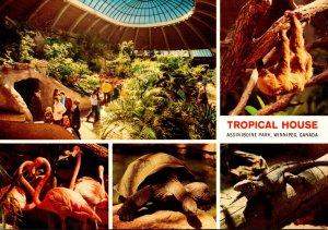 Canada Winnipeg Assiniboine Park Zoo Tropical House