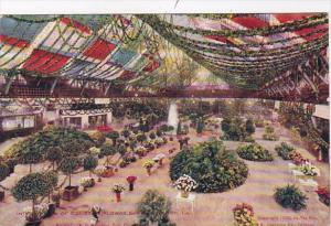 Illinois Chicago Interior View Of Coliseum During Flower Show