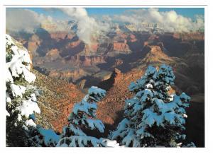 Grand Canyon First Snow Winter Fred Harvey Chrome 4X6 AZ