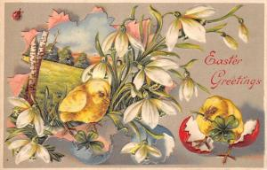 Easter~Snowdrop Lilies~Chicks Break Out~Meadow~Red Blue Eggs~Ladybug~Emboss~ZIM