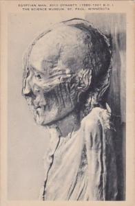 Minnesota Saint Paul Egyptian Man XVIII Dynasty ( 1580 1321 BC) The Science M...