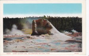 Giant Geyser Cone Yellowstone National Park