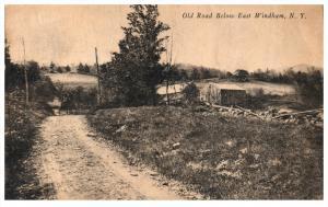 237   NY   East Windham  Old Road below