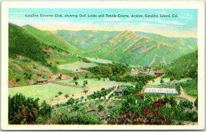 Catalina Island, California Postcard CATALINA COUNTRY CLUB Aerial View c1930s