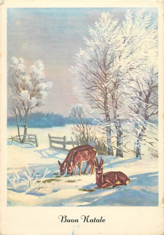 Buon Natale Italy greetings winter fantasy deer postcard