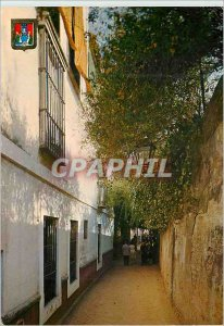 Postcard Modern Sevilla typical street water sevilla