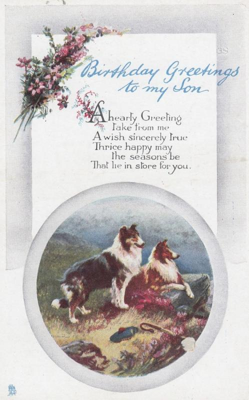 Collie Dogs Birthday Greeting , 00-10s ; TUCK 1213