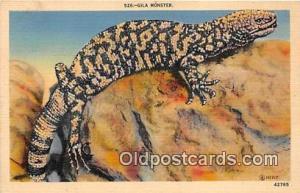 Gila Monster Postcard Post Card  Gila Monster