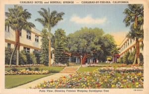 carlsbad hotel and mineral springs california L4851 antique postcard