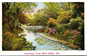 Missouri Greetings From Red Bird