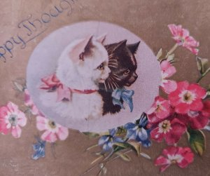 Happy Thoughts Greeting Cat Kitten Ribbon Bows PC Red Pink Blue Primrose Flowers
