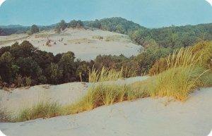 Sand Dunes along Lake Michigan