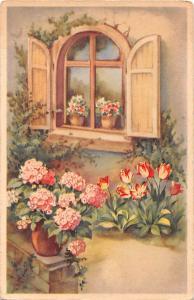 Fleurs Flowers, tulips, window, fantasy