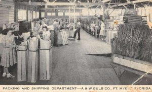 Fort Myers Florida A and W Bulb Co Packing Department Vintage Postcard AA22933