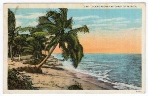 Scene Along The Coast Of Florida