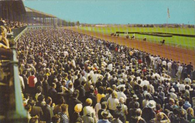 Kentucky Lexington Stretch Drive At Keeneland Race Track