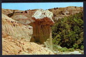 Balanced Stump,Petrified Forest,Cedar Canyon,ND Badlands BIN