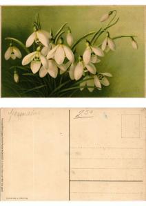 CPA Fruhling in Herz und Welt Meissner & Buch Litho Serie 1559 (730516)