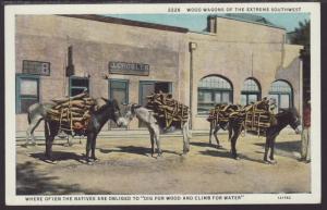 Donkeys,Wood Wagons of the Extreme Southwest