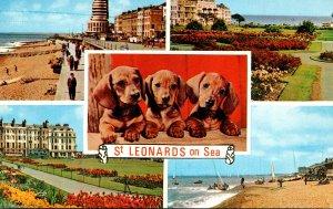 England St Leonards On Sea Multi View