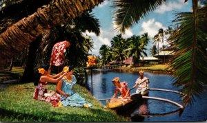 Hawaii United Jet Mainliner Card