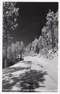 Arizona Road Scene Mt Lemmon Near Tucson Real Photo