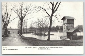Paterson New Jersey~Arcola~Bridge to Red Mill~Edward Easton Property~1905 B&W PC