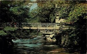 Inglis Falls Ontario~Steel Bridge~Sydenham River at Bruce Trail~Stone Mill~1960s