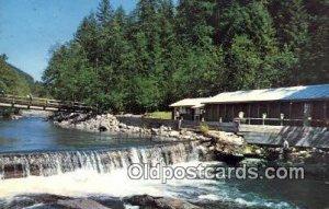 Breithenbush Hot Springs - Detroit, Oregon