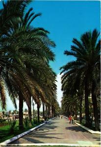 CPA Espagne-Mallorca-Palma de Mallorca-Paseo de Sagrera (323315)