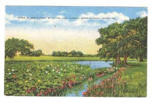 Scene In Weeks Park, Municipal Golf Course, Wichita Falls, Texas, PU-1951