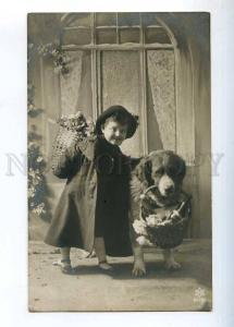 233689 Greeting Girl SAINT BERNARD St.Bernard Dog Old PHOTO