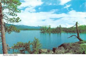 Payette Lakes - Idaho