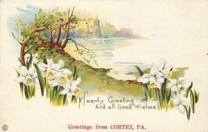 Cortez Pennsylvania~Embossed Daffodils Along River~1910 Postcard Greeting